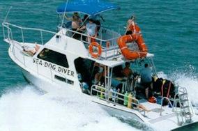 Sea Dog Diver boat