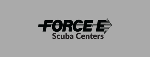 Force E logo